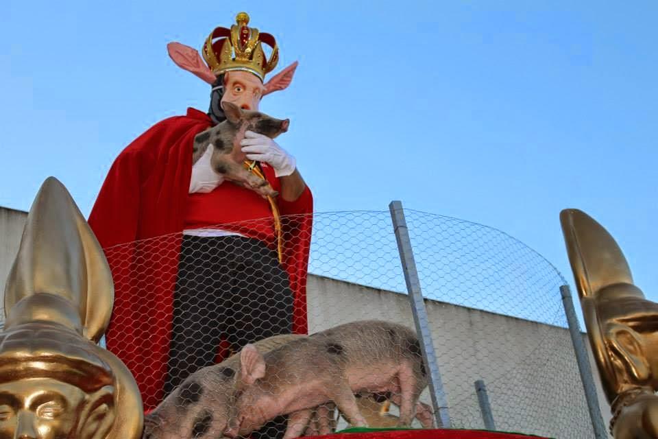 rei-porco1